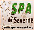 spasaverne67