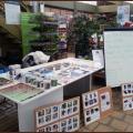 OP Botanic Fegersheim - 19 01 2013