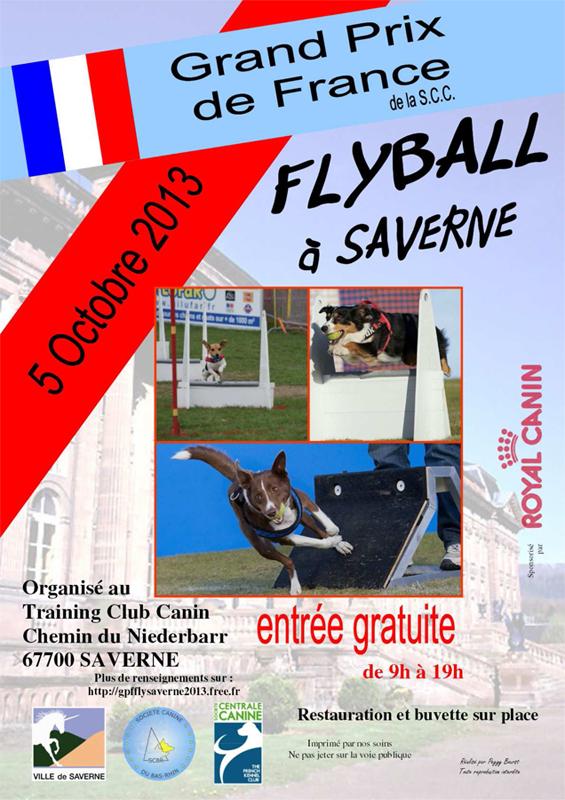 affiche-flyball-05-10-13.jpg