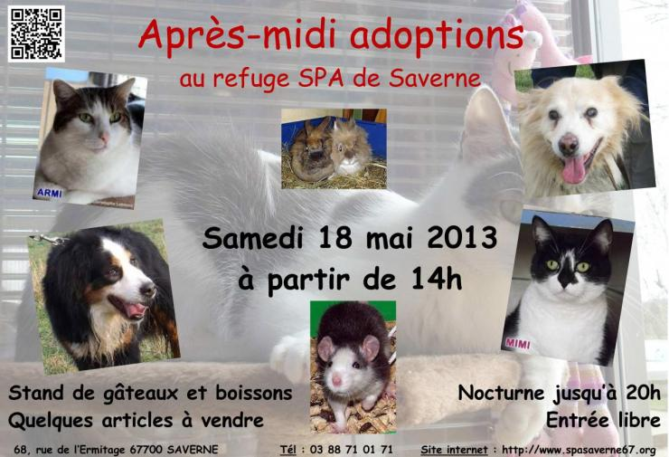 affiche-journee-adoption-180513.jpg