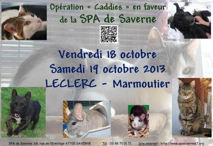 affiche-op-caddies-18102013.jpg