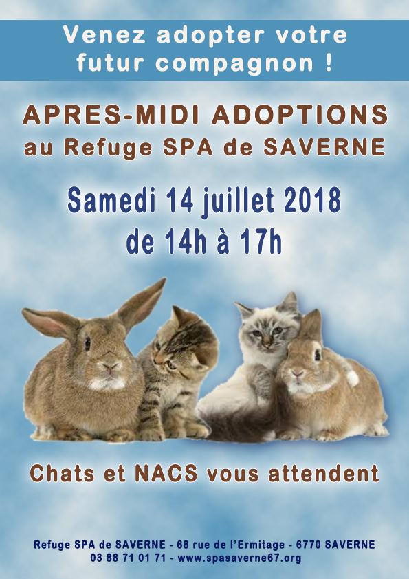 Apres midi adoptions 140718 v2