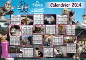 calendrier-2014-chats.jpg