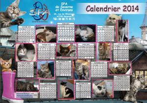calendrier-2014-chats.jpg