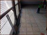 chatterie-01-12-2012-7.jpg