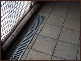 chatterie-01-12-2012-8.jpg