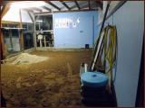 chatterie-10-11-2012-4.jpg