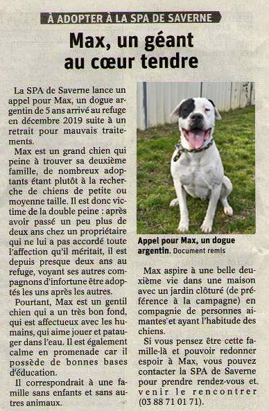 Chien max article dna 070921