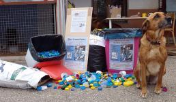 collecte-bouchons-01-06-13-9.jpg