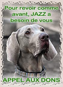Appel aux dons pour Jazz