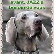 Jazz appel aux dons