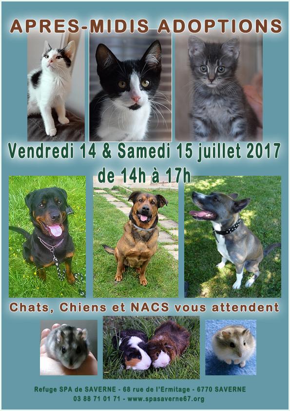 Journee adoptions14 15juillet2017