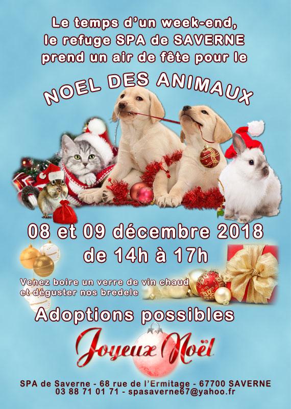 Noel des animaux 2018