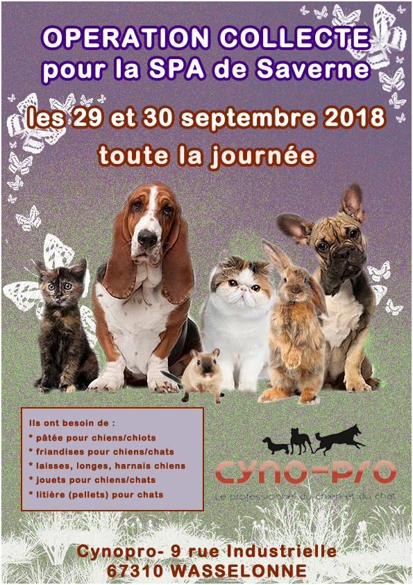Op cynopro septembre 2018