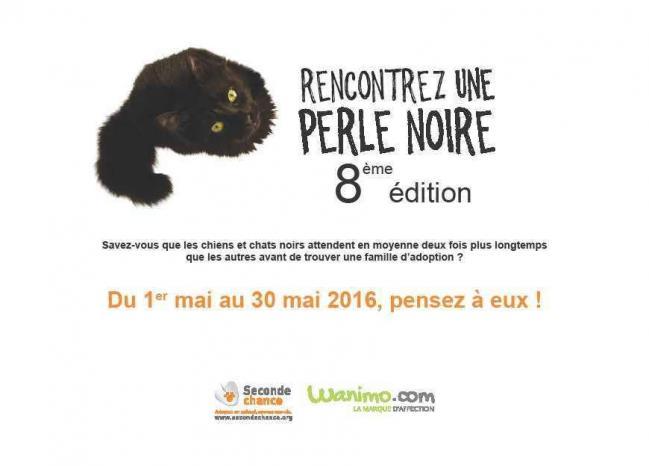 Perlesnoires2016