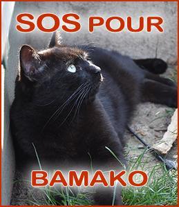 Sospourbamako