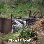 Trappage